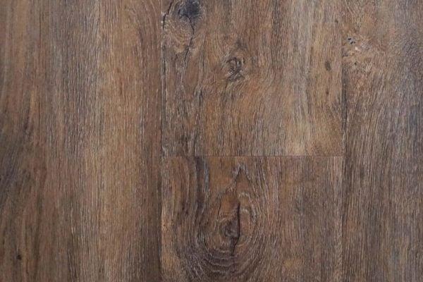 prime_tree-bark-1000×1000